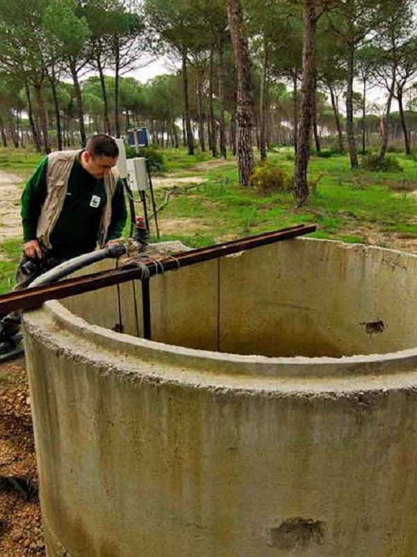 WWF arremete contra el regadío y los pozos ilegales en Doñana