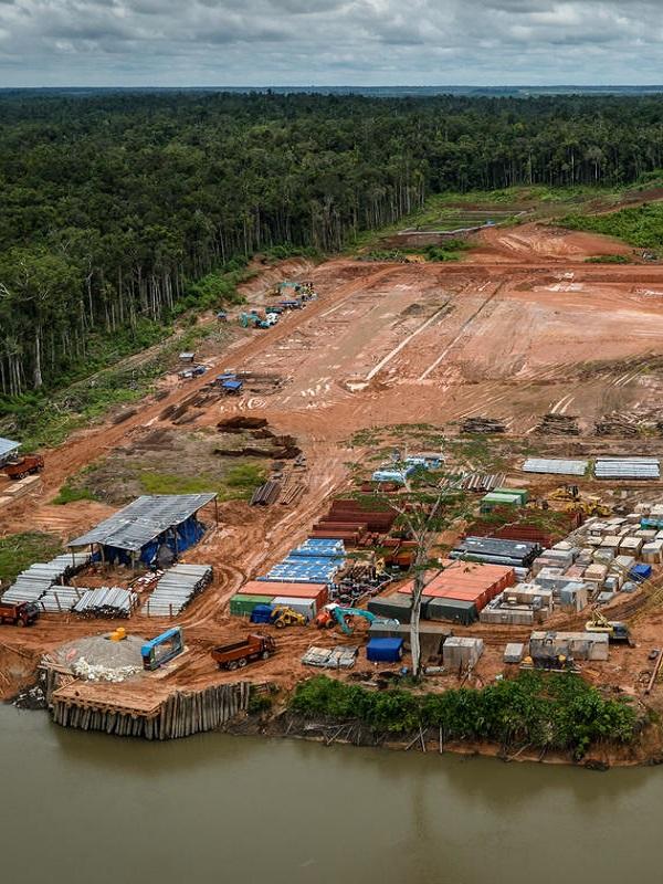 Tu marca de ropa está detrás de la destrucción de las selvas de Indonesia