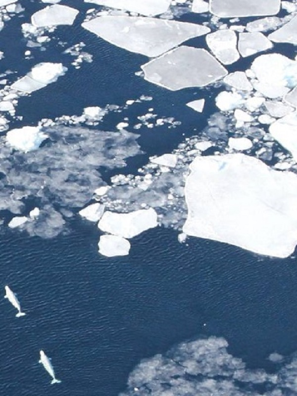 El Ártico ruso se desmorona