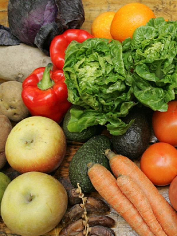 Biocórdoba reunirá al mundo relacionado con los alimentos ecológicos en su XXII edición, entre el 4 y el 14 de octubre.