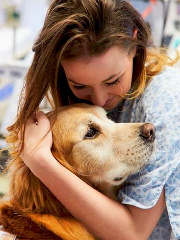Un programa con perros estimulará sensorial y cognitivamente a niños con trastorno autista de dos colegios de Murcia