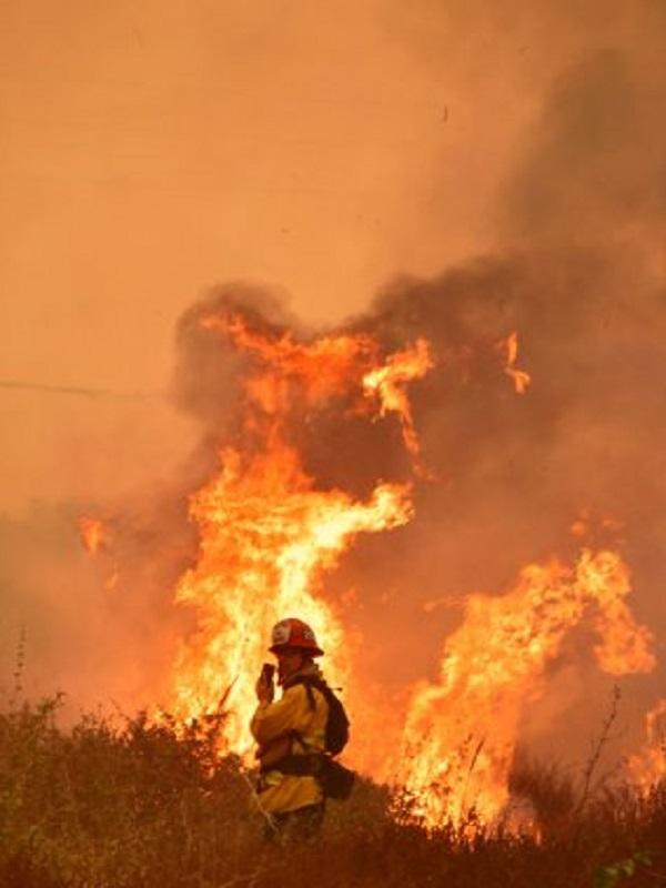 El fuego arrasa 20.613 hectáreas en lo que va de año, 5,14 veces menos que hace un año