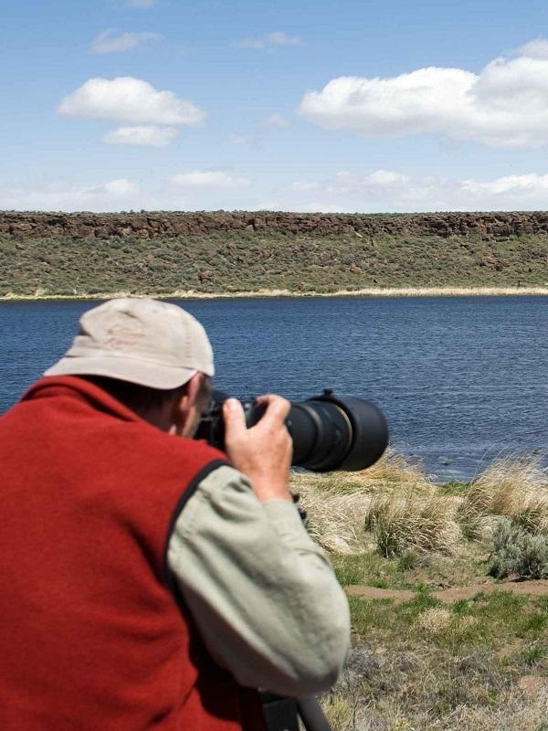 SEO/BirdLife lanza un código ético para la observación de aves en el que pide proteger su hábitat en el Día del Turismo