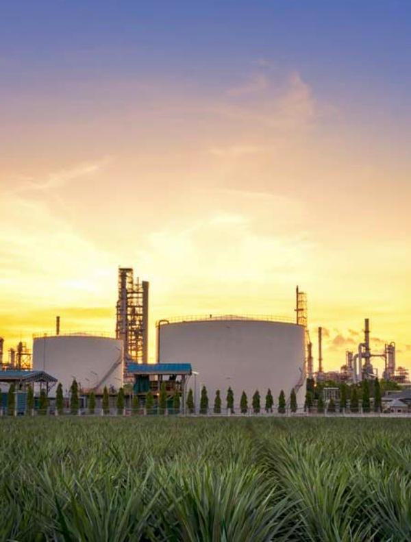 ¿Gas renovable?, la confusión para la ciudadanía está servida