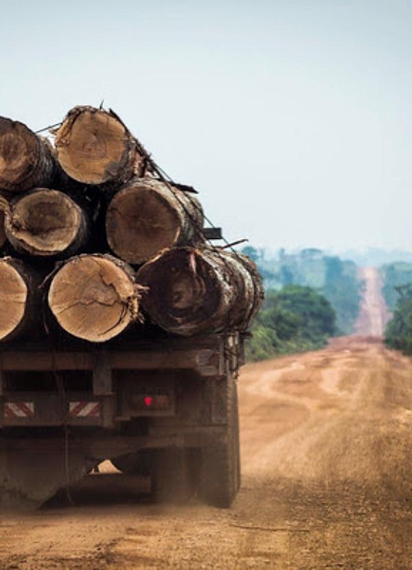 Brasil intenta desacreditar 'sin conseguirlo' los datos que denuncian un aumento de la deforestación