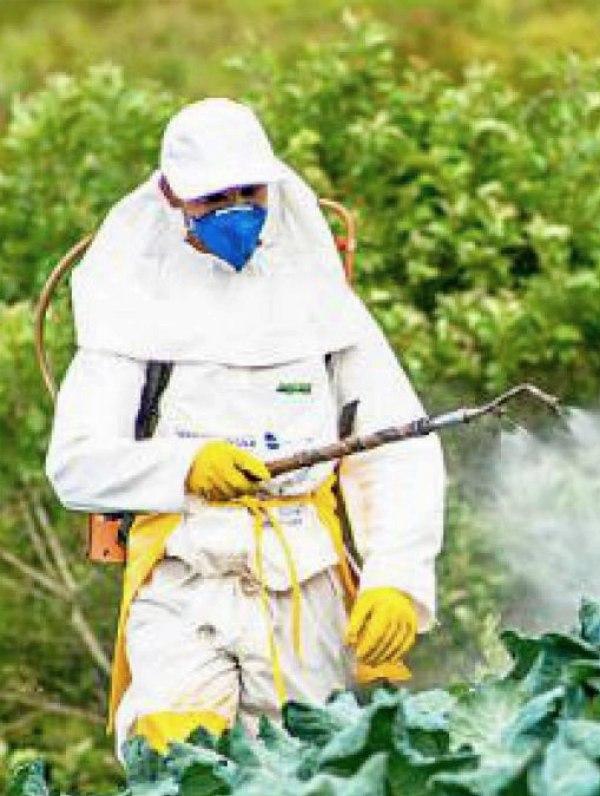Los plaguicidas en Colombia
