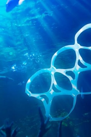 Galicia retira miles de kilos de residuos de sus mares