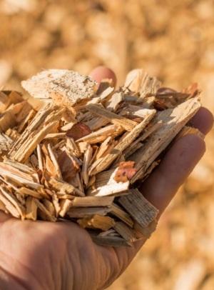 La biomasa de calefacción crece a buen ritmo en Galicia