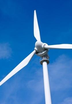Google, energía verde en la red