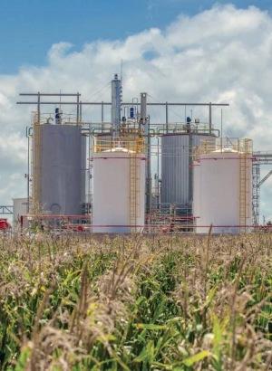 Bioetanol, la gasolina renovable