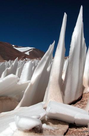 Agujas de hielo, el nuevo hábitat de especies microbianas