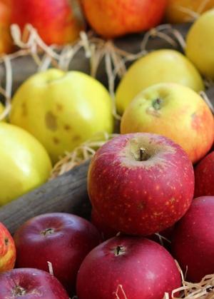 Receta Ecológica recomendada por ECOticias.com: Pastel de manzana Vegano