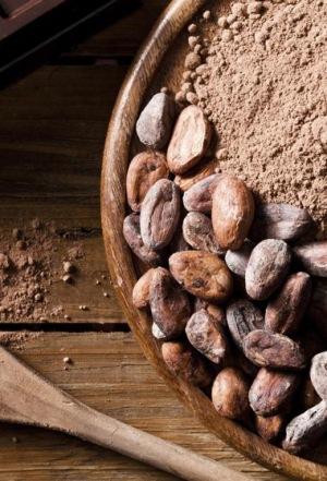 La cascarilla de cacao, buena para tu salud y para el medio ambiente