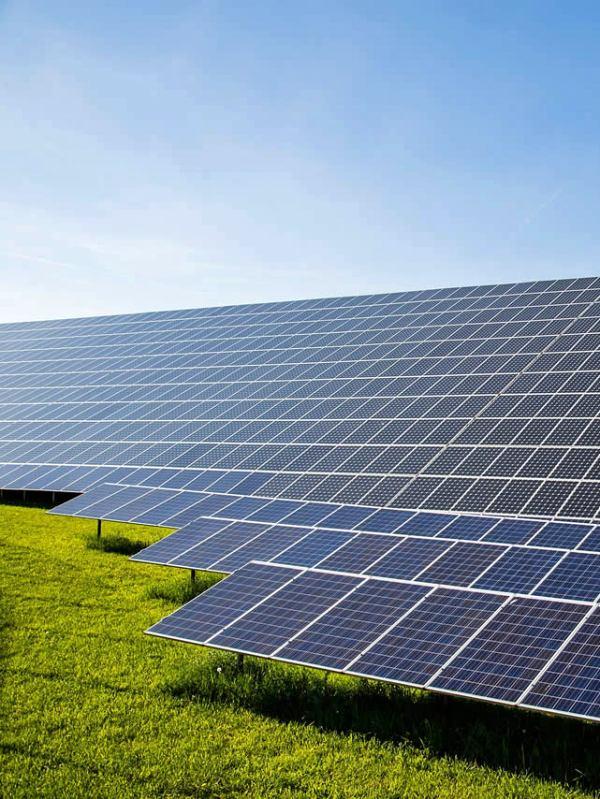 Greenpeace confía en que Andalucía podría liderar la transición energética