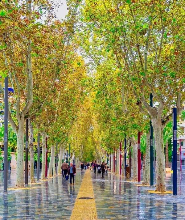Murcia, un ejemplo de ciudad que apuesta por la sostenibilidad