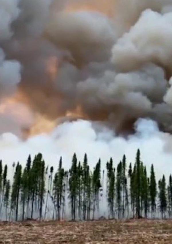 Los incendios forestales: grave riesgo para la salud, incluso para los que se encuentran lejos