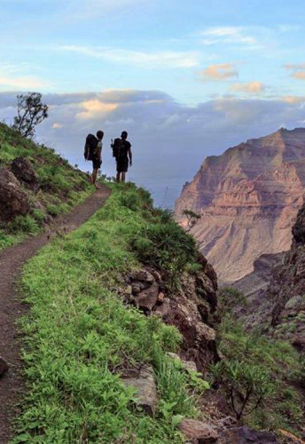 SEO/BirdLife presenta un plan para frenar la pérdida de biodiversidad en Canarias