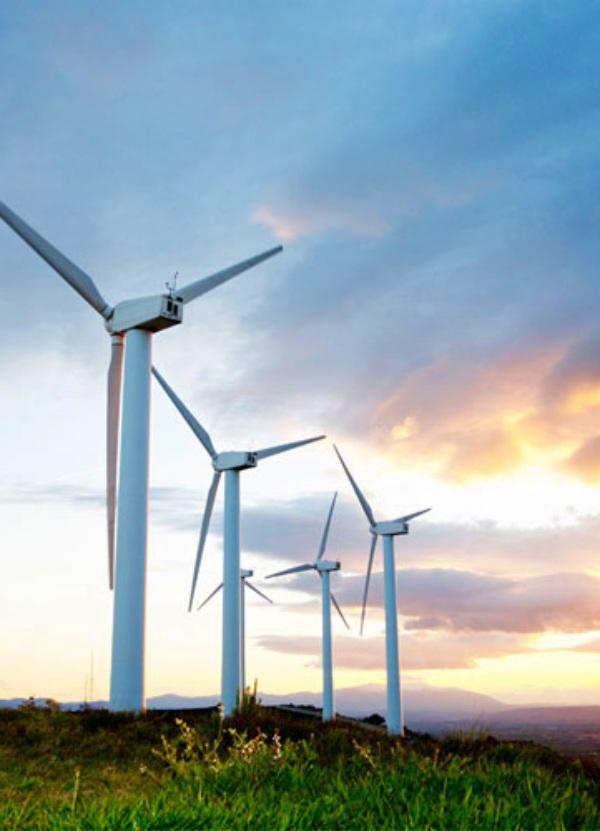 España acumula 8.000 millones de euros en demandas por recortes en renovables