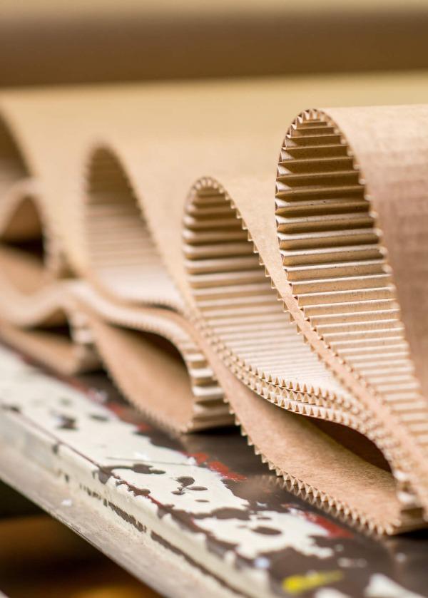 España plantea nuevos cambios en el reciclaje de papel y cartón