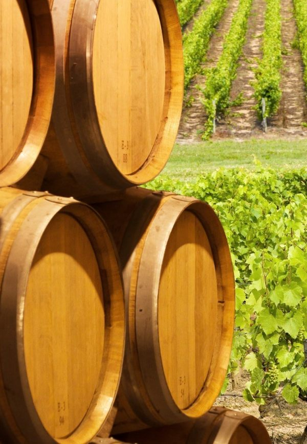 Finca Antigua Orgánico, primer vino 'bio' certificado de Bodegas Martinez Bujanza
