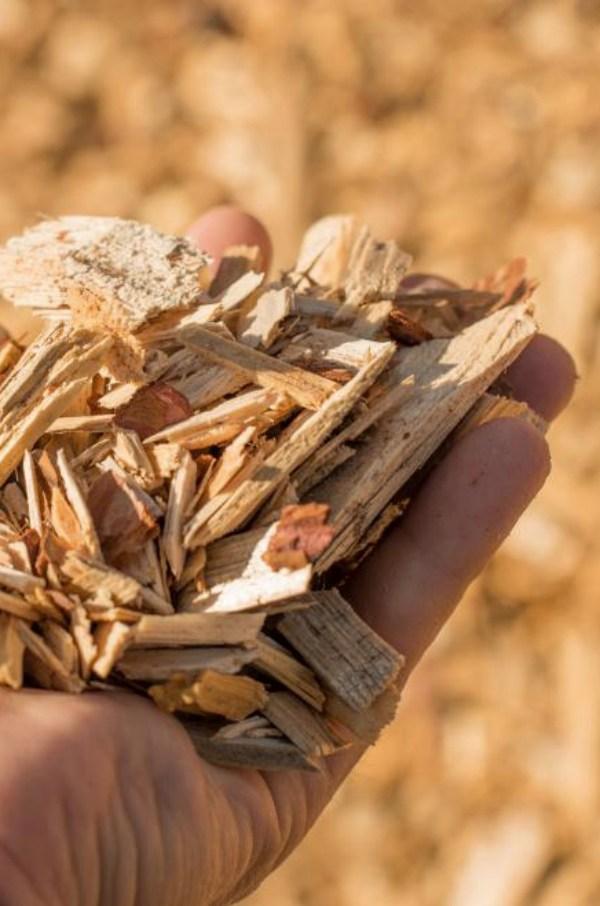 Una mejor gestión de la madera minimizaría el riesgo de incendios