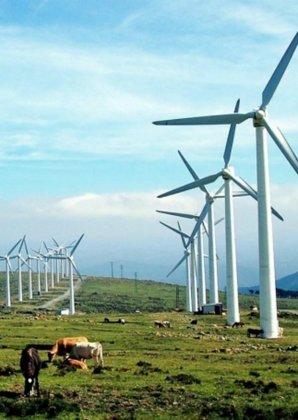 Galicia, territorio clave para capitanear la transición energética en España