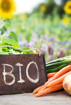 La agricultura ecológica reclama una visión trasversal de su actividad
