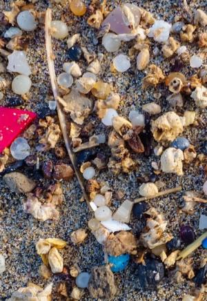 El río Ebro es una máquina de contaminar con microplásticos el Mar Mediterráneo