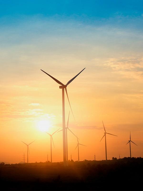 Energías renovables, el motor 'verde' del Planeta