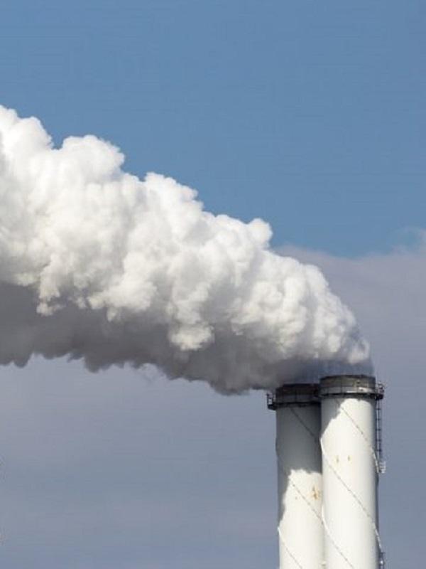 El Rey llama a reducir el impacto de la contaminación atmosférica