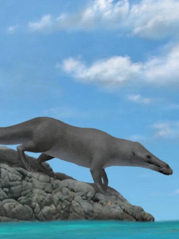 La ballena de cuatro patas