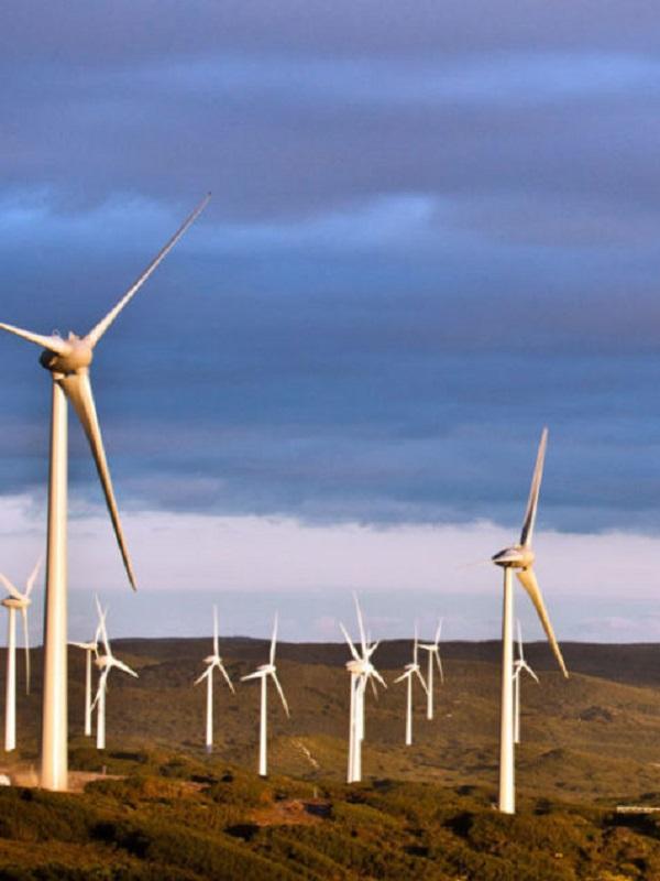 Podemos apuesta por un 100% de energías renovables en 2040