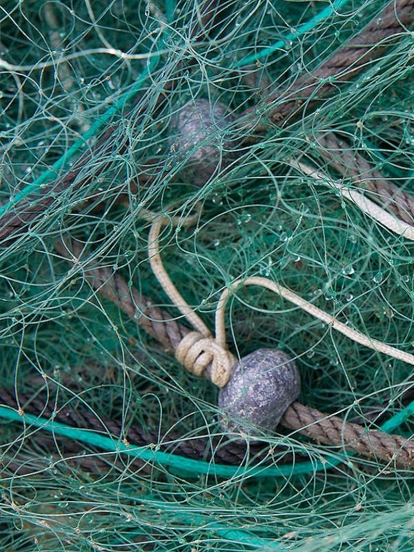 Tecnología verde para evitar que los desechos del sector pesquero acaben en el mar