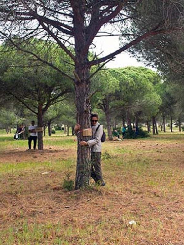 La ciudadanía contra la urbanización del mayor pinar de la costa de Sancti Petri