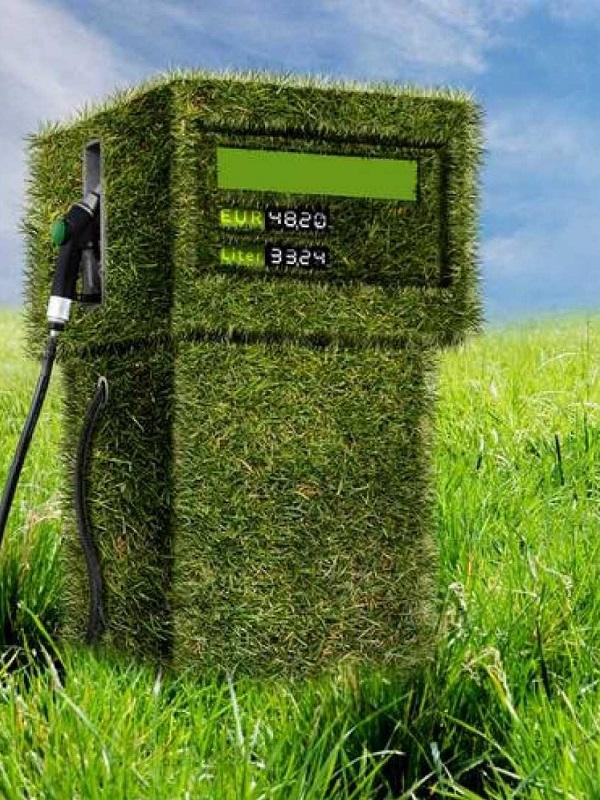 Seat transforma residuos orgánicos en biocombustible