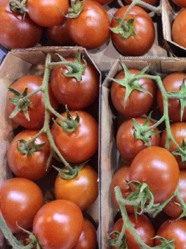 Los  productos ecológicos Gourmet tienen nombre propio:  Ecosur