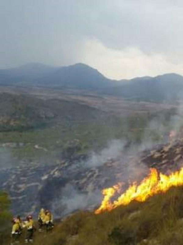 La Fiscalía advierte a 151 alcaldes de 6 CCAA de que no tener un plan contra incendios es un delito