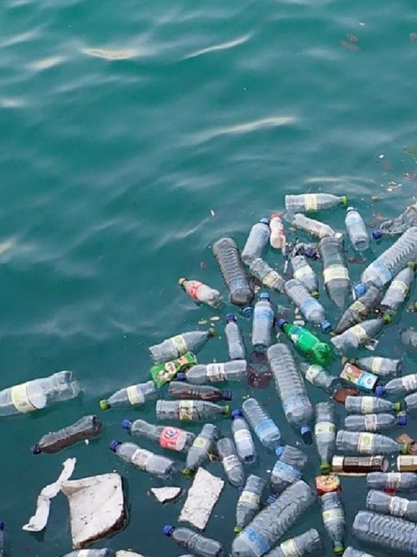 El Acuario acoge las primeras jornadas contra la contaminación plástica