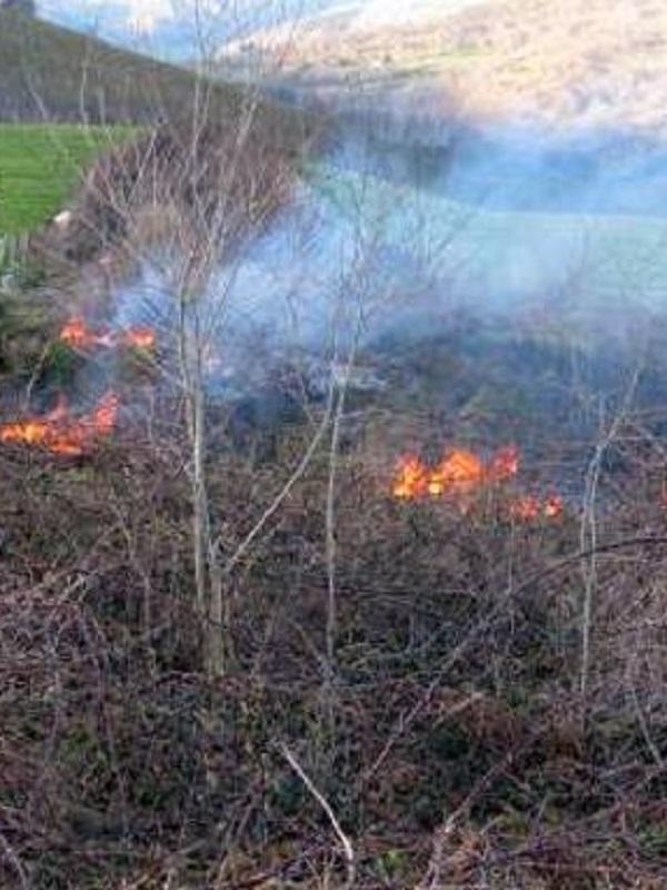 La Guardia Civil investiga a un hombre por dos incendios en Liérganes