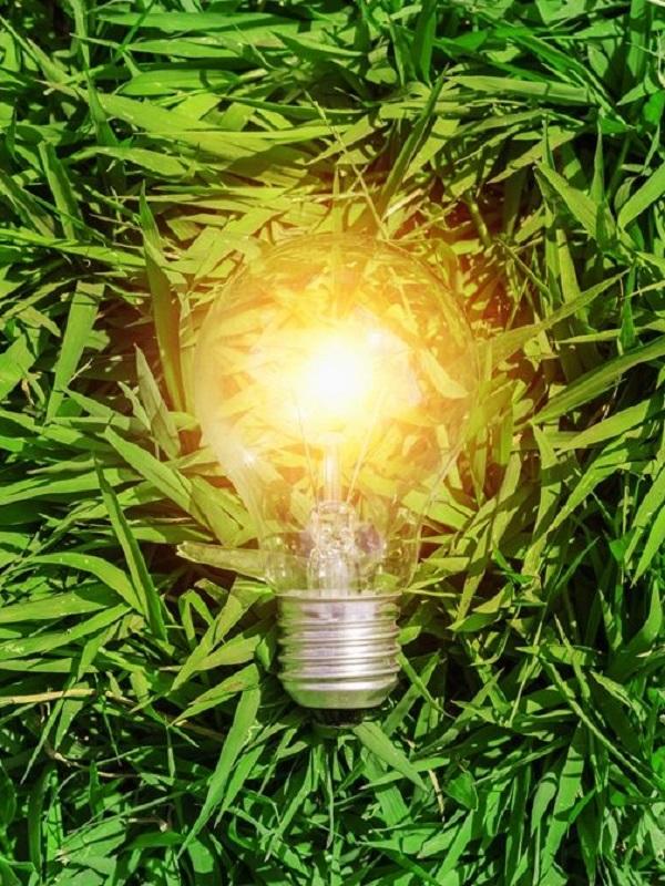 ¿Producir energía verde a partir de las sobras del vino?