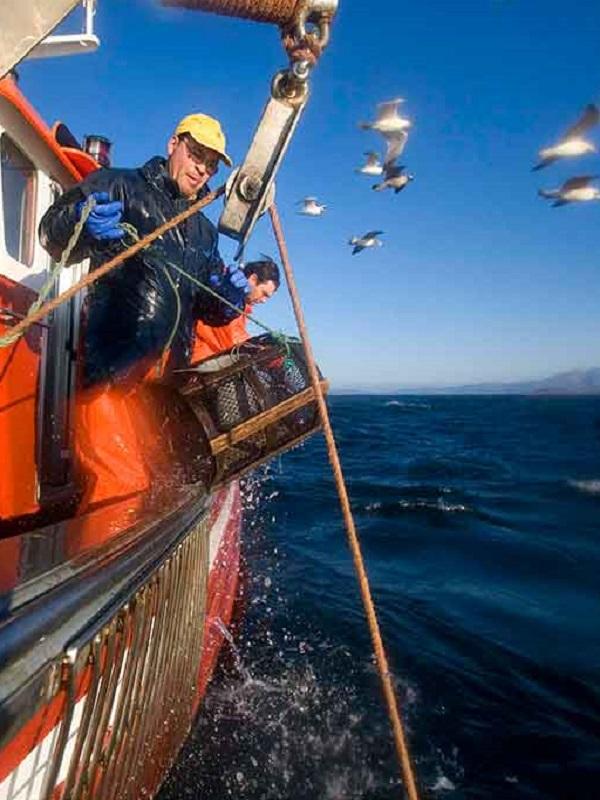 Europa financia la capacidad pesquera en aguas sobreexplotadas