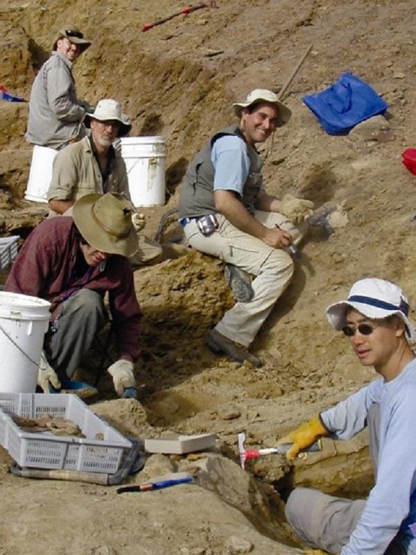 Un osario fósil, vinculado al meteoro que acabó con los dinosaurios