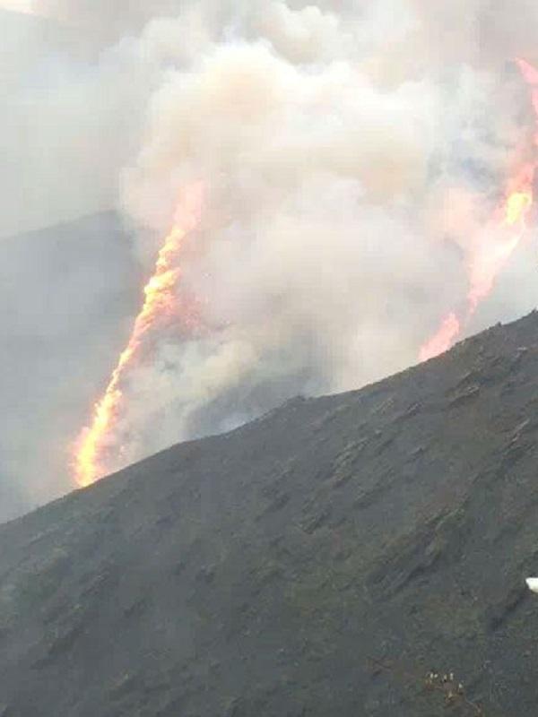 El Secretario de UCA tiene que dimitir tras ser condenado por incendiar un monte asturiano