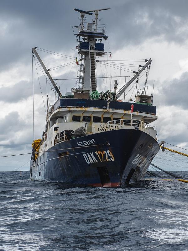 La colaboración entre la Guardia Costera de Liberia y Sea Shepherd resulta en el quinceavo arresto por delitos de pesca