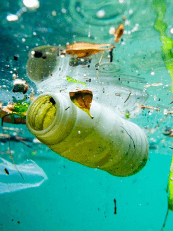 'Uno menos en el mar' recoge más de 7.000 cepillos de dientes de plástico para luchar contra la contaminación marina