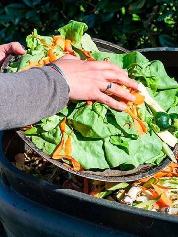 Jordania se implica contra el desperdicio alimentario
