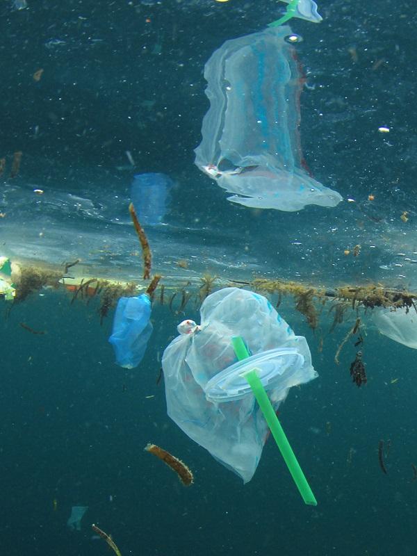El plástico representa el 29,3% de la basura marina, según un estudio del IEO de Murcia
