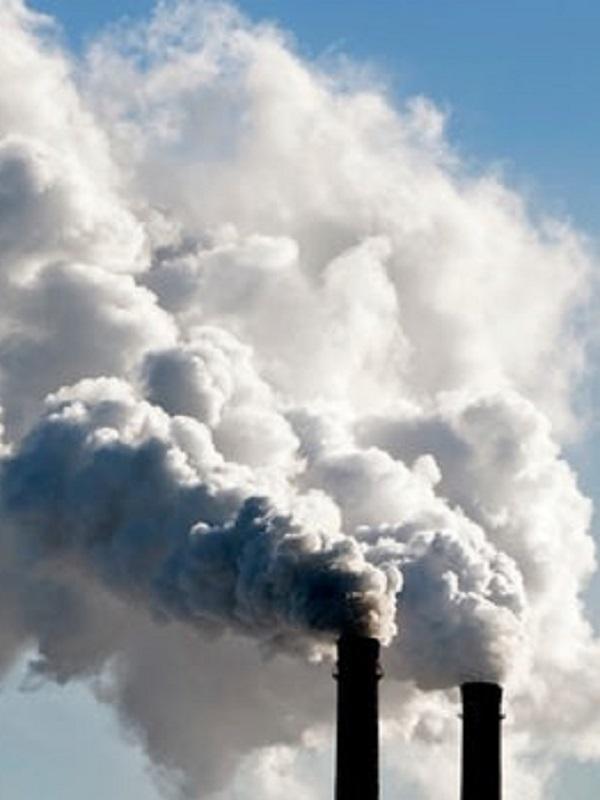 La 'Rebelión no violenta' para exigir un sistema cero CO2 en 2025