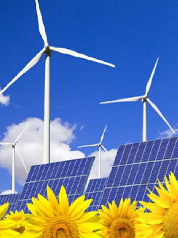 Murcia. PSOE se marca el reto de llegar al cien por cien en el consumo de energías renovables para 2050