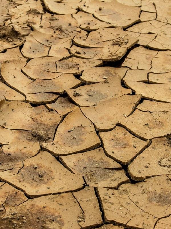 Las instituciones científicas son las que tienen más credibilidad sobre cambio climático